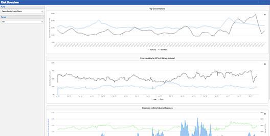 risk overview screenshot